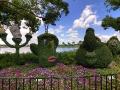 Disneyland Park 11
