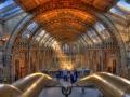Természettudományi Múzeum HDR 02
