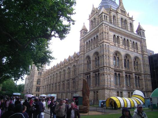 Londoni Természettudományi Múzeum - Natural History Museum