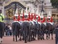 Buckingham Palota lovasok