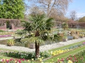 Kensington Palota - Sunken Garden 05