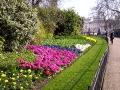 Szent Jakab Park virágkert