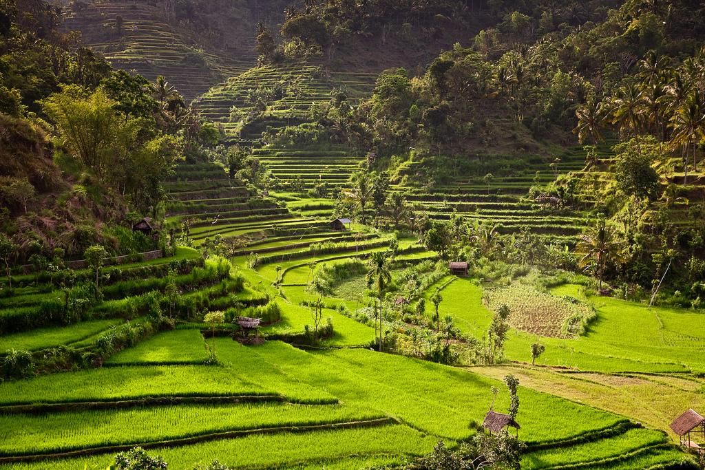 bali sziget térkép Bali, Indonézia, Bali sziget, Bali utazás, Vízum, Képek
